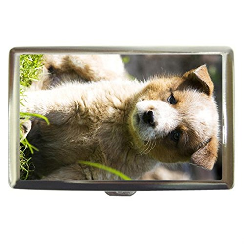 Puppy Australian Cattle Dog Custom Business Name Card Money Credit Card Holder Box Case front-427815
