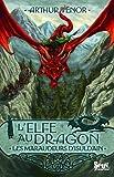 """Afficher """"L'Elfe au dragon n° 1 Les Maraudeurs d'Isuldain"""""""