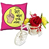 Sky Trends The Best Rakhi Raksha Bandhan Gifts For Sister Flowers Cycle And Cushion Cover