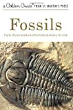 img - for Fossils (Golden Guide) book / textbook / text book