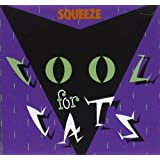 Cool For Catsby Squeeze