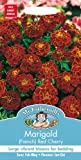 Mr. Fothergill's 16233 Marigold French Red Cherry Seeds for 60 Plants