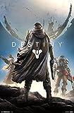 "Activision Destiny, Key Art, 22"" x 34"", Wall Poster"