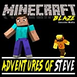 Adventures of Steve: Fighting Minecraft's Blaze | Innovme Media