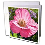 Patricia Sanders Flowers - pink poppy - 6 Greeting Cards with envelopes (gc_22679_1)