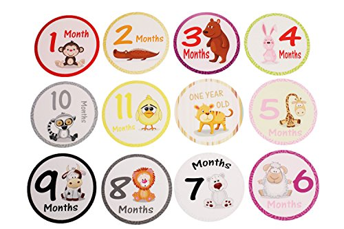 Maria Jane Unisex Baby Monthly Stickers 20 Sticker Set, Month Stickers Including Festive Holidays - Perfect Newborn Gifts