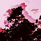 Loss Of Affect by Primordial Undermind [Music CD]