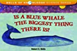 Is A Blue Whale The Biggest Thing The...