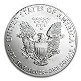 2014 U.S. Silver Eagle in Perfect Fit Air-Tite