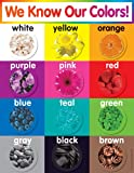 Scholastic TF2503 Colors Chart