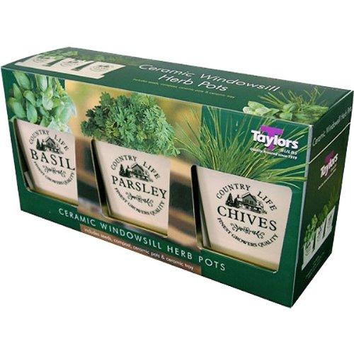 Windowsill Herb Pots