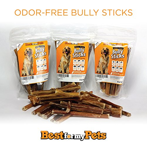 6 bully sticks 12 pack best premium american beef chews ideal for all dogs safe easily. Black Bedroom Furniture Sets. Home Design Ideas