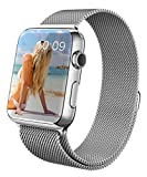 GEOTEL® Apple Watch Band 42mm, Milanese Loop Stainless Steel Bracelet Strap Band for Apple Watch 42mm All Models with Unique Magnet Lock(No Buckle Needed) (Silver)