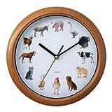 New York Gift - Reloj de aprendizaje (Paroh HO1963) [Importado de Inglaterra]