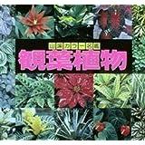 観葉植物 (山渓カラー名鑑)