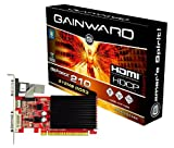 Gainward GeForce GF210 Grafikkarte