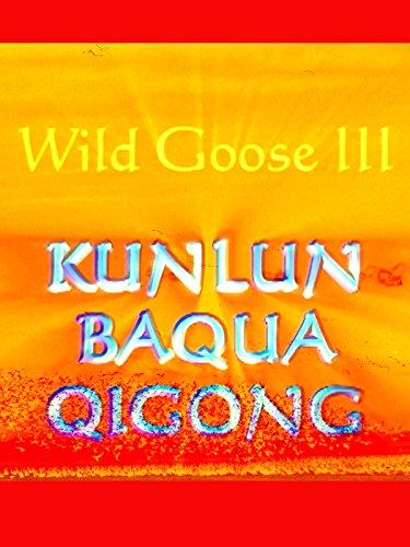 Wild Goose Qigong III - Kunlun Bagua Qigong with Dr. Hu (Remastered)