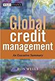 Global Credit Management: An Executive Summary (The Wiley Finance Series)
