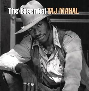 Essential Taj Mahal