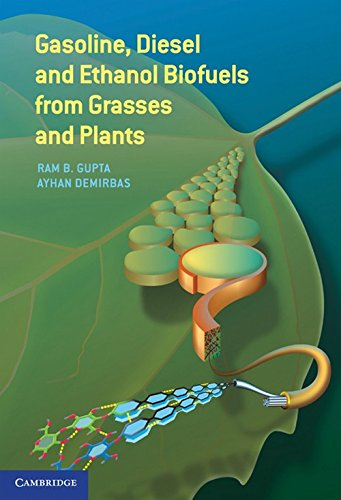 Image for publication on Gasoline, Diesel, and Ethanol Biofuels from Grasses and Plants