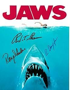 Amazon.com: JAWS, Classic Movie, 8 X 10 Movie Poster ...