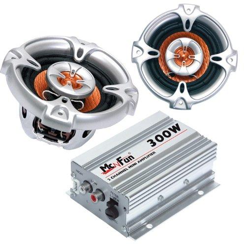 300W Auto Musikanlage Endstufe Lautsprecher CAR-317