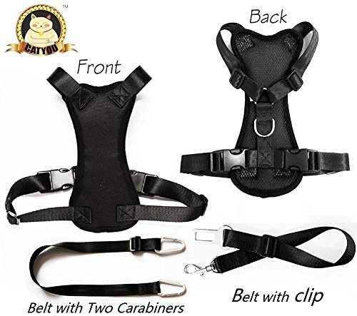CatYou Durable Pet Car Safety Harness for Dog Cat + Nylon Pet Car SeatBelt Restraint Tether (Large (Harness+Belts), Black) by CatYou (Pomeranian Harness compare prices)