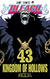 Bleach, Vol. 43 (Bleach (Graphic Novels))