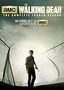 The Walking Dead: The Complete Fourth Season[DVD]