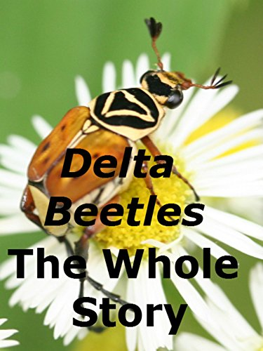 Delta Beetles The Whole Story