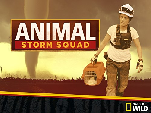 Animal Storm Squad Season 1