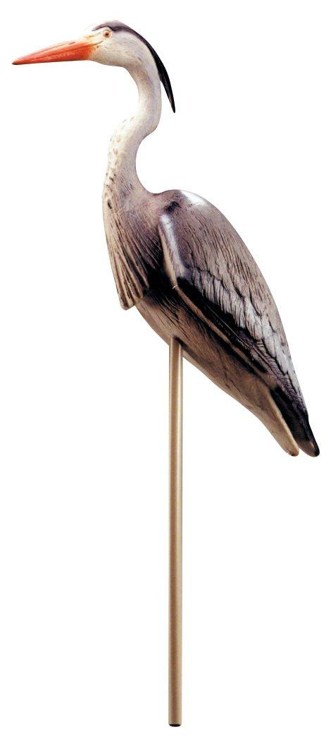 Laguna Blue Heron