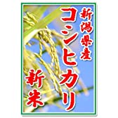 【新米27年産】田辺さん家の有機質肥料100%・低減農薬 新潟県産コシヒカリ100%白米 10kg くっつかないしゃもじ付