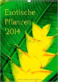 exotische pflanzen wandkalender 2014 din a3 hoch exotische pflanzen aus hawaii monatskalender. Black Bedroom Furniture Sets. Home Design Ideas