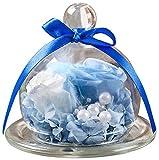 TEATSIGHT(ティートサイト) プリザーブドフラワー 枯れないお花 「ガラスポット入り バラ 2輪」 (白×水色) クリアケース入り