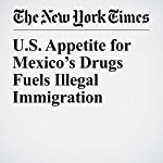 U.S. Appetite for Mexico's Drugs Fuels Illegal Immigration | Ron Nixon,Fernanda Santos
