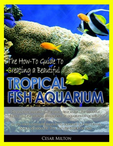 Aquariums 101: The How-To Guide to Creating a Beautiful Tropical Fish Aquarium