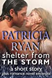 img - for Shelter from the Storm, a short story book / textbook / text book