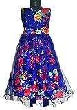 My Lil Princess_Blue Garden Dress_30