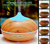 Zen Breeze Essential Oil Diffuser and Aroma Humidifier