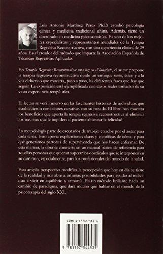 Terapia Regresiva Reconstructiva: Una Luz En El Laberinto. Un Metodo Para Reparar El Alma. Volumen I