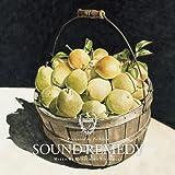 Sound Remedy –Folklove- mixed by Kenichiro Nishihara