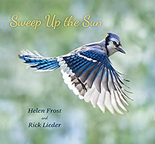 Book Cover: Sweep Up the Sun