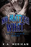 No Matter What (gay biker MC erotic romance novel) (Sex & Mayhem Book 4) (English Edition)