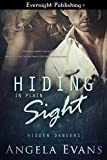 Hiding in Plain Sight (Hidden Dangers Book 1)
