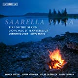 Saarella Palaa/Fire on the Island