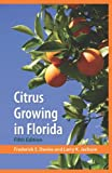Search : Citrus Growing in Florida
