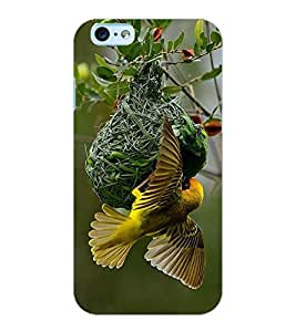 ColourCraft Busy Bird Design Back Case Cover for APPLE IPHONE 6