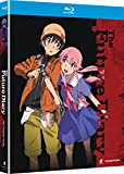 Future Diary: Complete Series [Blu-ray]