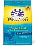 Wellness Whitefish & Sweet Potato Dry Dog Food (1x15lb)